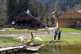 Museumsgel�nde in Gosau